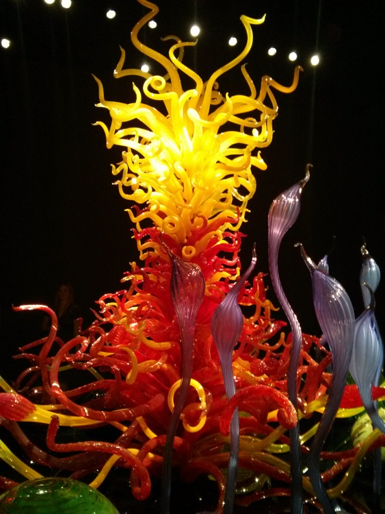 4-Chihuly4