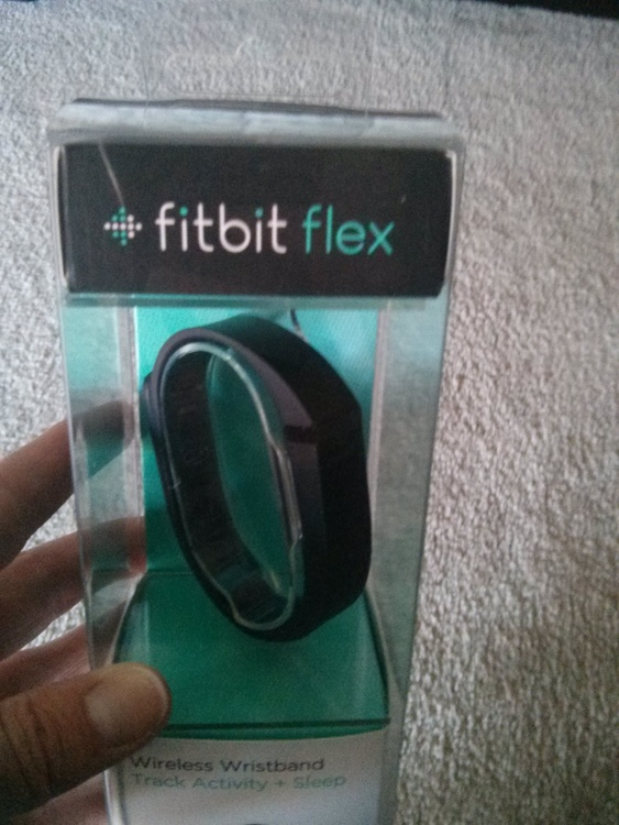 1-fitbit