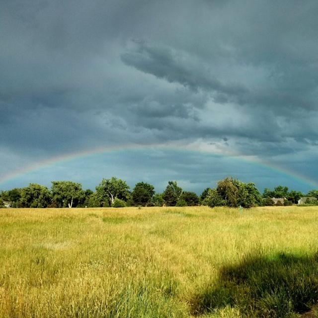 7-rainbow